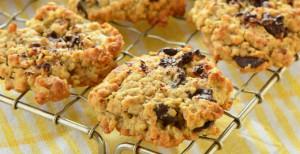 Oatmeal Chocolate Chip Cookie Recipe
